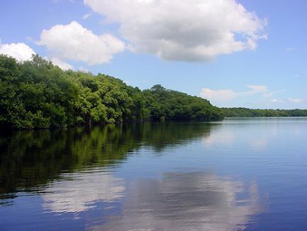 Próximo a concluir proyecto ambiental Sabana-Camagüey